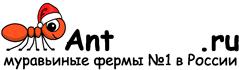 Муравьиные фермы AntFarms.ru - Брянск